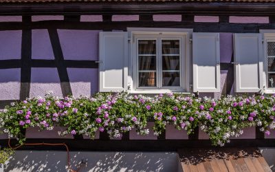 Besuchen Sie Betschdorf  im Elsass
