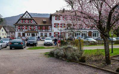 Restaurant Au Cheval Blanc in Niedersteinbach / Elsass