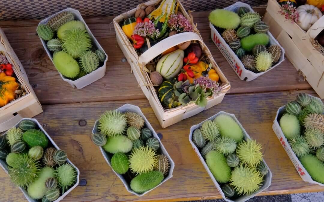 Elsässer- und Pfälzer Bio Bauernmarkt in Wissembourg