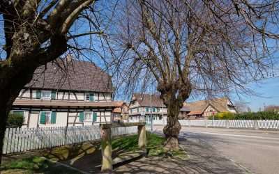 Sessenheim – ein kleiner Ort im Elsass mit Goethe Museum