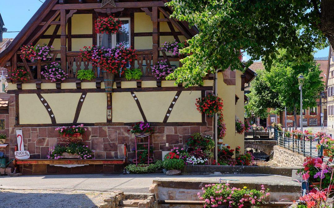 Scherwiller im Elsass | Weinort an der elsässischen Weinstrasse