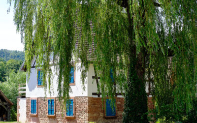 Pass Alsace – Entdecke das Elsass