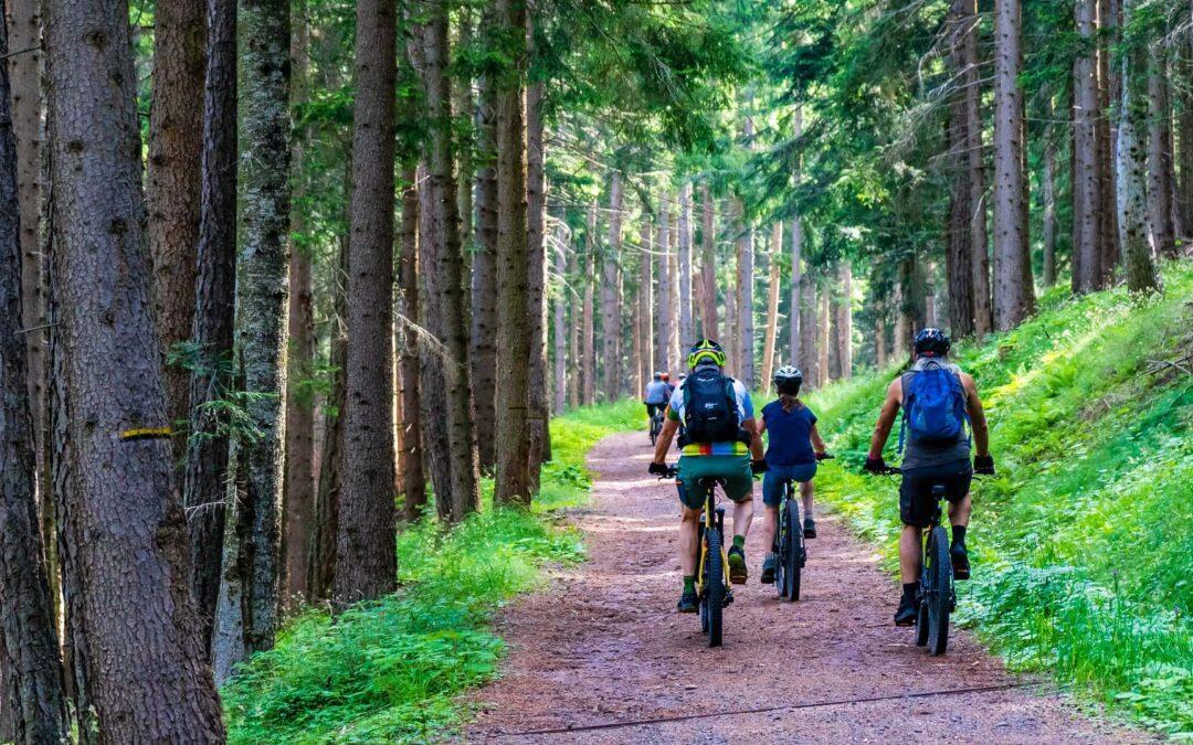 Die schönsten Fahrradrouten im Elsass